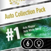Auto Collection N1 6 fem