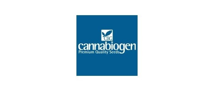 Cannabiogen Pack de 5 semillas